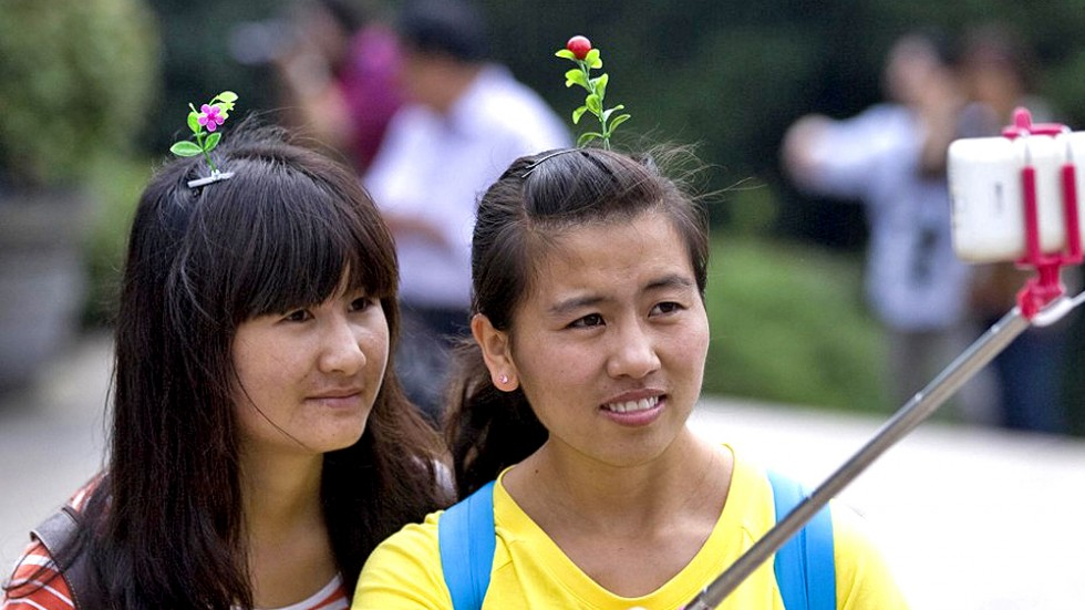 plant-hair